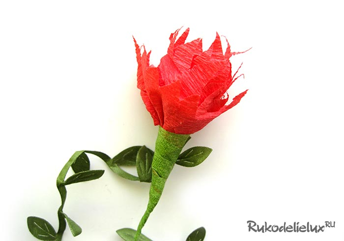 Red carnation with your own hands