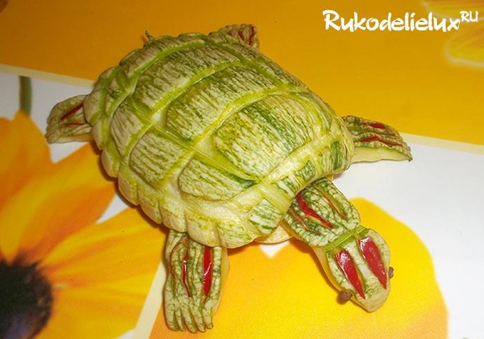 Черепаха из кабачка