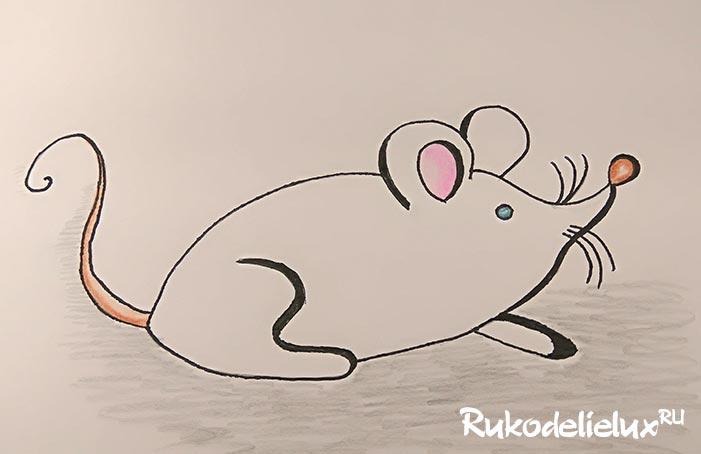 Рисование белой крысы поэтапно