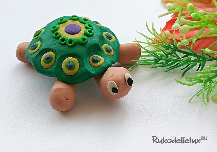 Яркая черепаха из пластилина для детей