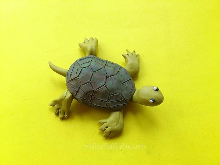 Черепаха из пластилина: 5 способов как слепить черепаху своими ...