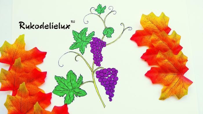 рисуем виноград с ребенком карандашами и фломастерами