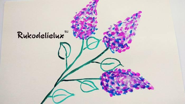 мазки цветков сирени по контуру акварелью