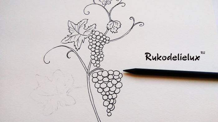больше усиков и виноградин на рисунке своими руками