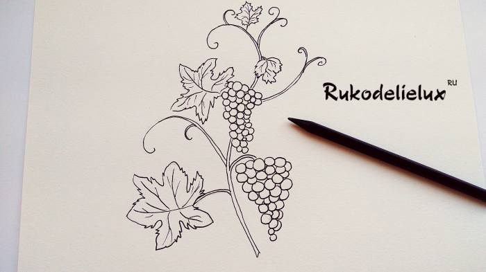 снизу рисунка большие гроздья и листики