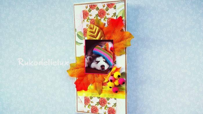 фото 8 осенняя открытка хаски поздравительная