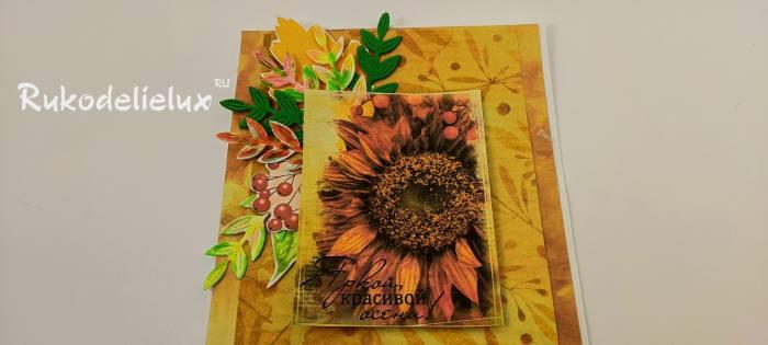 подсолнухи осенние 8 фото открытка