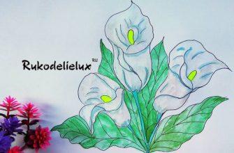 рисовать цветы каллы карандашами и краской акварелью