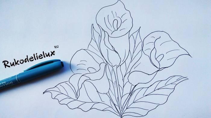 листочки калла в рисунке для детей